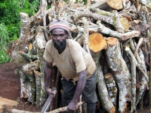 A Jamaican charcoal burner