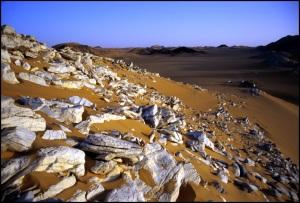 The Tenere Desert, Niger