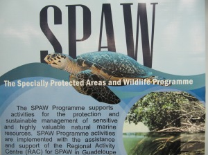 The SPAW Protocol (My photo)