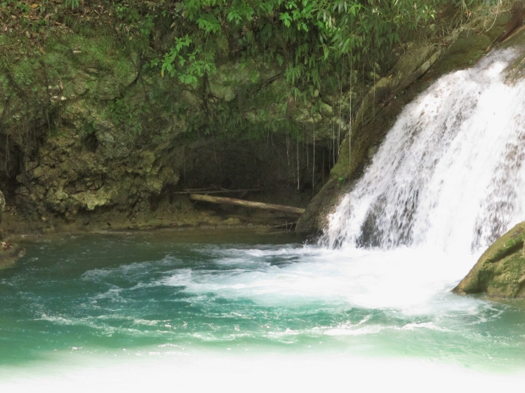The YS Falls consists of seven levels of waterfalls.