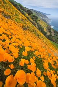 Big Sur is breathtaking. No other word for it. (Photo: Esalen Institute, Big Sur, California)