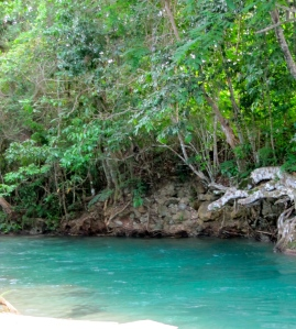 Wood and Water: White River in Ocho Rios, St. Ann. (My photo)