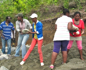 Women carrying stones up to the check dam in Somerset. At left is project coordinator Joslyn. (My photo)