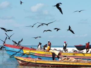Fishermen (and frigate birds) at the Pedro Cays.