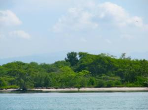 A stretch of beach on Little Goat Island. (My photo)