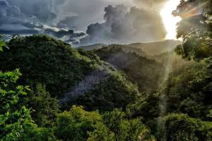 A glorious photograph of Jamaica's Cockpit Country by Ted Lee Eubanks.
