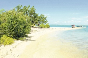 Right, we'll just bulldoze this... A concrete pier here, perhaps... A beach on Goat Island. (Photo: Michael Gordon/Jamaica Observer)