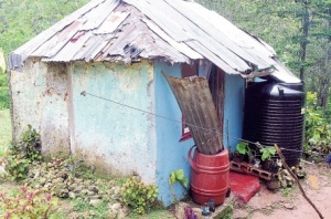 The house in which a woman and nine children live in St. Ann. (Photo: Jamaica Observer)