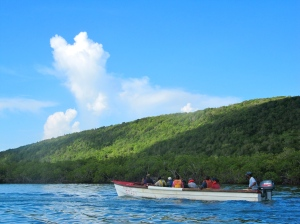 The recent flotilla of seven boats passed around the Goat Islands. We were not allowed to land on them. Here we are near on end of Great Goat Island, which is 700 feet at its highest point. (My photo)