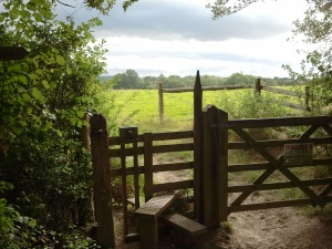 A stile to climb over.