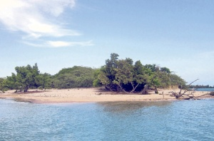 Little Goat Island is one of two cays that make up Goat Islands. (PHOTO: ANN SUTTON)