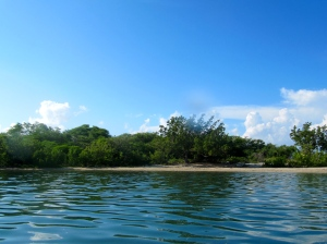 A beach on the smaller Goat Island. (My photo)