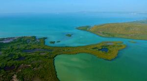 Aerial view - end of Great Goat Island top right. (Photo: Max Earle)