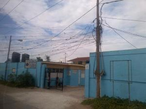 Illegal electricity connections in Kingston.