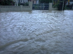 Water, water everywhere… St. Mary flooding. (Photo: Jamaica Observer)