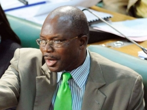 Mr. Everald Warmington, M.P., is considered by some to be bullying and indeed, somewhat coarse.
