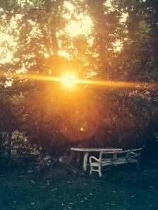 The Centre's peaceful garden. (Photo: Facebook)