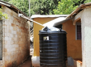 Rainwater harvesting in St. Elizabeth. (Photo: Ian Allen/Gleaner)