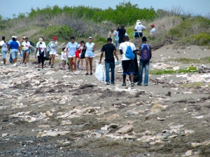 Volunteers on Fort Rocky beach at last year's International Beach Cleanup Day. (My photo)