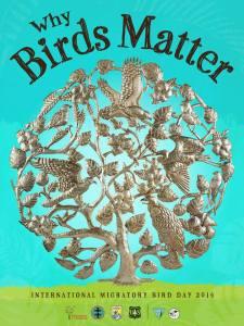 International Migratory Bird Day 2014.