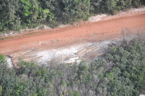 A tiny fraction of the deforestation in Guyana on the Kwakwani/Ituni trail by Bai Shan Lin. (Photo: Kaiteur News)