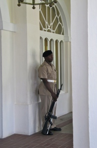 On guard at the entrance to King's House.