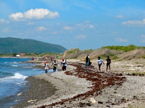 The volunteers foraged way down the beach, and even along the Port Royal road. The hill in the background is Naggo Head in St. Catherine, on the other side of Kingston Harbour.