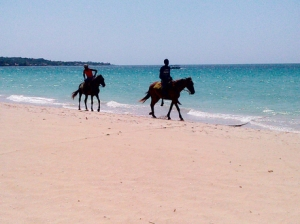 Horseback riders have now appeared on Negril beach, creating annoyance and even danger to those enjoying a stretch on the sand. (Photo: Gleaner)