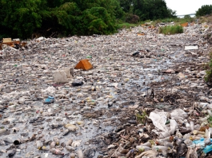 Seaview Gardens is a pretty name. This is what it looks like - or at least the gully that empties into Kingston Harbour a little further down. (Photo: Gleaner)