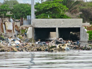 Garbage washed down from gullies and clogging Kingston Harbour. (My photo)