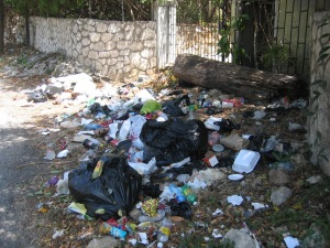 Careless garbage disposal leads to mosquito breeding.