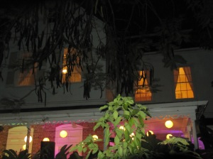 The back of Devon House lit up on December 9. There was the opening of an art exhibition inside and downstairs we were on the verandah at the Resolution Project book launch. (My photo)