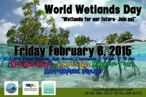 C-CAM's World Wetlands Day activities.
