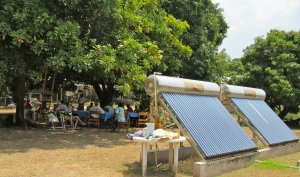 I visited the residents, who were relaxing in the shade of fruitful mango and ackee trees. Note the solar water heaters in the foreground. (My photo)