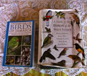 "My two personal favorite bird books: (left) A Photographic Guide to the Birds of Jamaica by Ann Haynes-Sutton, Audrey Downer and Robert Sutton (recently acquired, and therefore nice and clean); and A Guide to the Birds of the West Indies by Herbert Raffaele, James Wiley, Orlando Garrido, Allan Keith and Janis Raffaele (much older and somewhat battered, but signed by Mr. Raffaele, my ""bird guru"")."