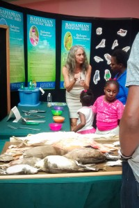 Visitors learn about birds with the help of bird study skins at the Bahamas National Trust CEBF exhibit at the Mall at Marathon in Nassau, Bahamas.