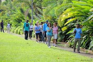 Birdwatching is a favorite occupation in Hope Gardens, St. Andrew, and delegates will be able to enjoy this experience with some early morning sessions, too.