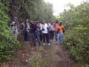BirdsCaribbean conducted a Caribbean Birding Trail guide training in the Cockpit Country, Jamaica in June. Here the group of trainees pauses on a road where many endemic species could be seen. (Photo: BirdsCaribbean/Facebook)