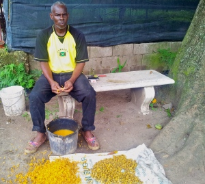 Garden meditation… This gentleman was shelling palm seeds.