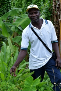 Local guide showing traditional medicinal plants along the trail, Flagstaff, Cockpit Country, Jamaica. (Photo: Ted Lee Eubanks)