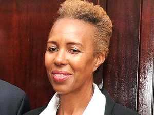 Businesswoman and the Opposition Deputy Finance Spokesperson, Fayval Williams. (Photo: Gleaner)