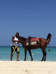 A horse does its business on the beautiful Negril beach. (Photo: Mary Veira)