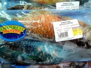 Parrot fish for sale in a local supermarket. (Photo: Twitter)