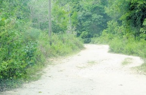 A mother of five, Melissa Smith was chopped to death and a schoolgirl was raped on this road in Barnett Hall, St. Ann in June, 2015.