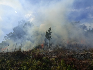 Fire burning to clear land for farming, near Sturge Town. (Photo: Wendy Lee)