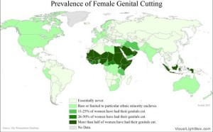 This map shows the global prevalence of FGM. (dofeve.org/The Woman Stats Project)