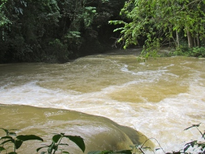 The riches of the Martha Brae River in Trelawny - water flowing in abundance in Cockpit Country. (My photo)