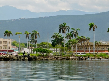 Downtown Kingston, from the Harbour, simmering on a hot day in August 2014. (My photo)