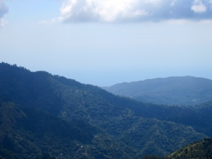 The Blue Mountains, recently named as a UNESCO World Heritage Site, contain magic. (My photo)