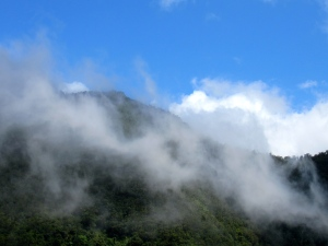 Mist over the Blue Mountains at Newcastle, bringing moisture. (My photo)